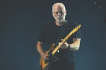 Giuseppe-Craca-foto-David-Gilmour-Arena-Verona-2015-12