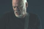 Giuseppe-Craca-foto-David-Gilmour-Arena-Verona-2015-13