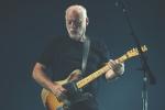 Giuseppe-Craca-foto-David-Gilmour-Arena-Verona-2015-14