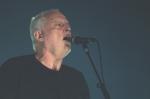 Giuseppe-Craca-foto-David-Gilmour-Arena-Verona-2015-18