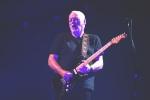 Giuseppe-Craca-foto-David-Gilmour-Arena-Verona-2015-8